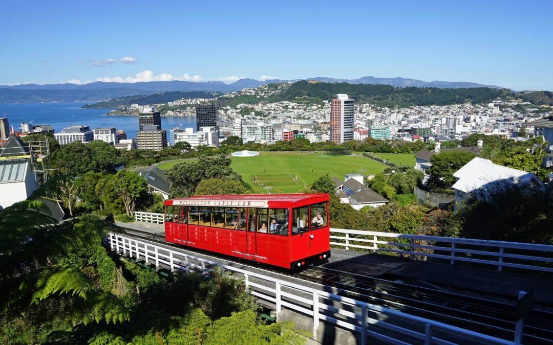 Wellington Community Housing Provider Network